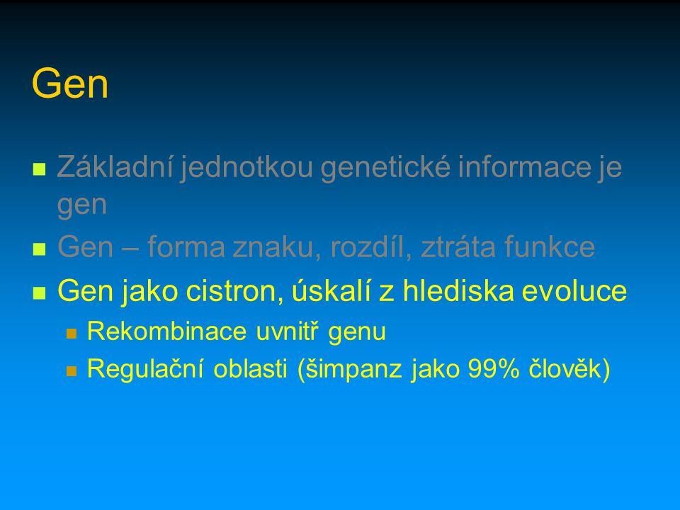 Gen Základní jednotkou genetické informace je gen