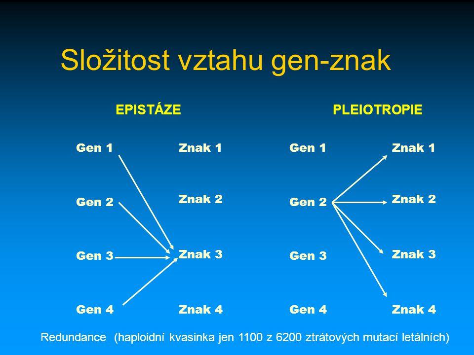 Složitost vztahu gen-znak
