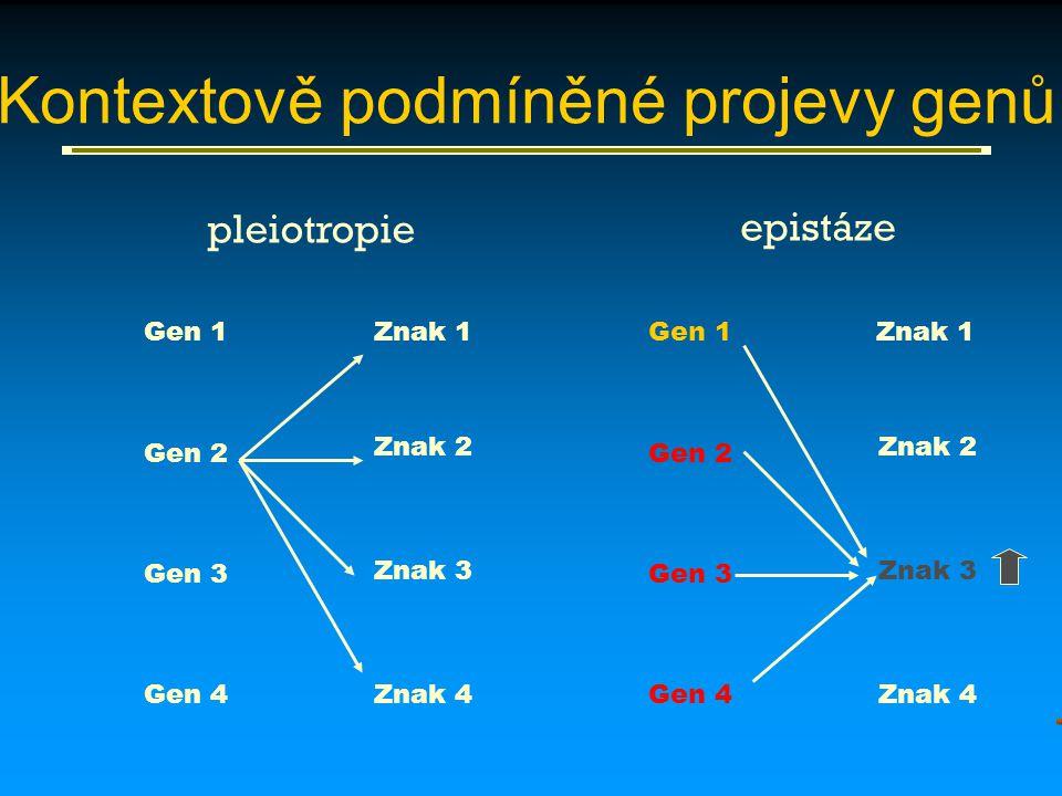 Kontextově podmíněné projevy genů