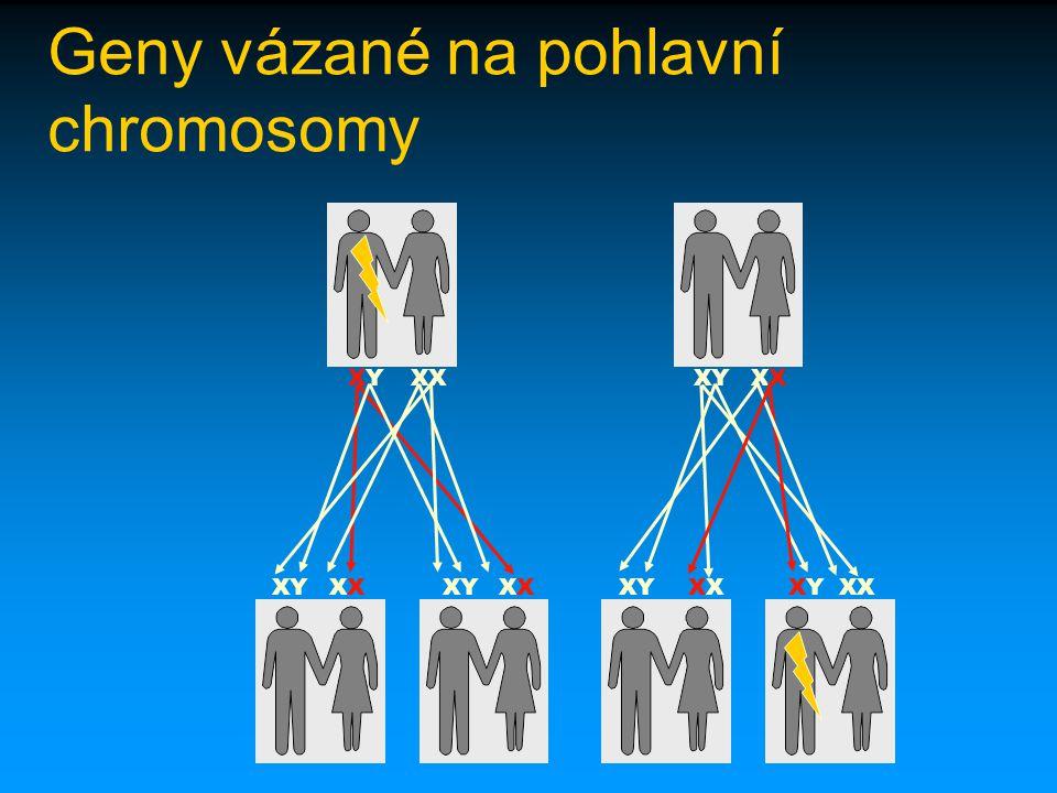 Geny vázané na pohlavní chromosomy
