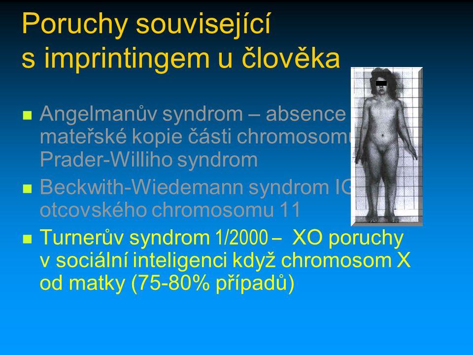 Poruchy související s imprintingem u člověka