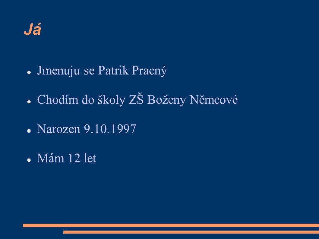 Já Jmenuju se Patrik Pracný Chodím do školy ZŠ Boženy Němcové
