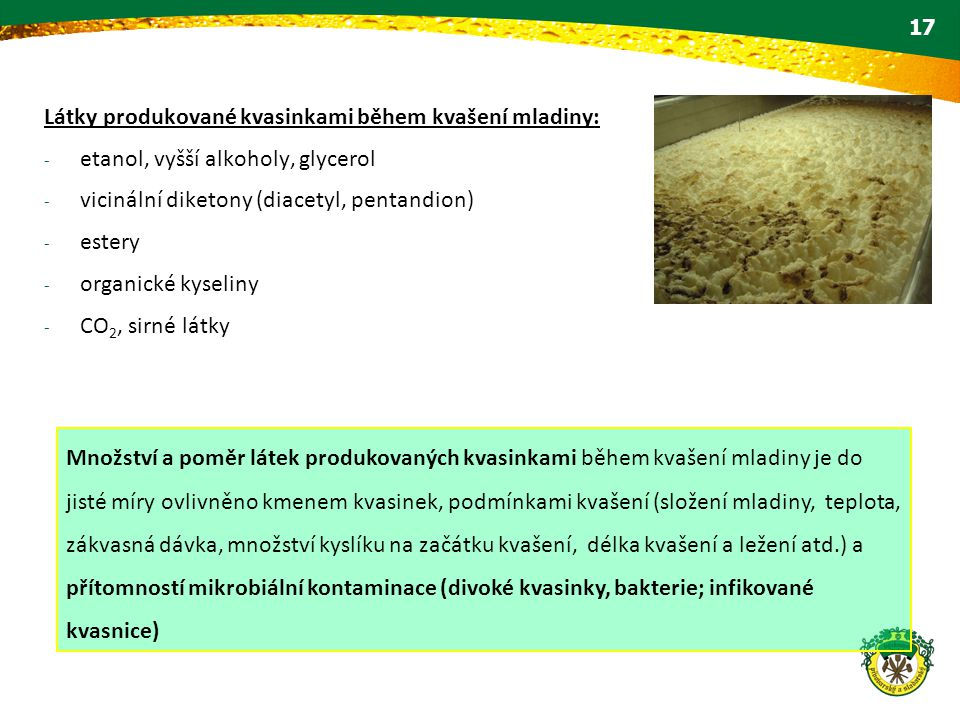 Látky produkované kvasinkami během kvašení mladiny:
