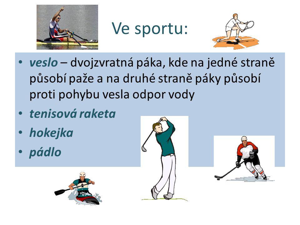 Ve sportu: veslo – dvojzvratná páka, kde na jedné straně působí paže a na druhé straně páky působí proti pohybu vesla odpor vody.