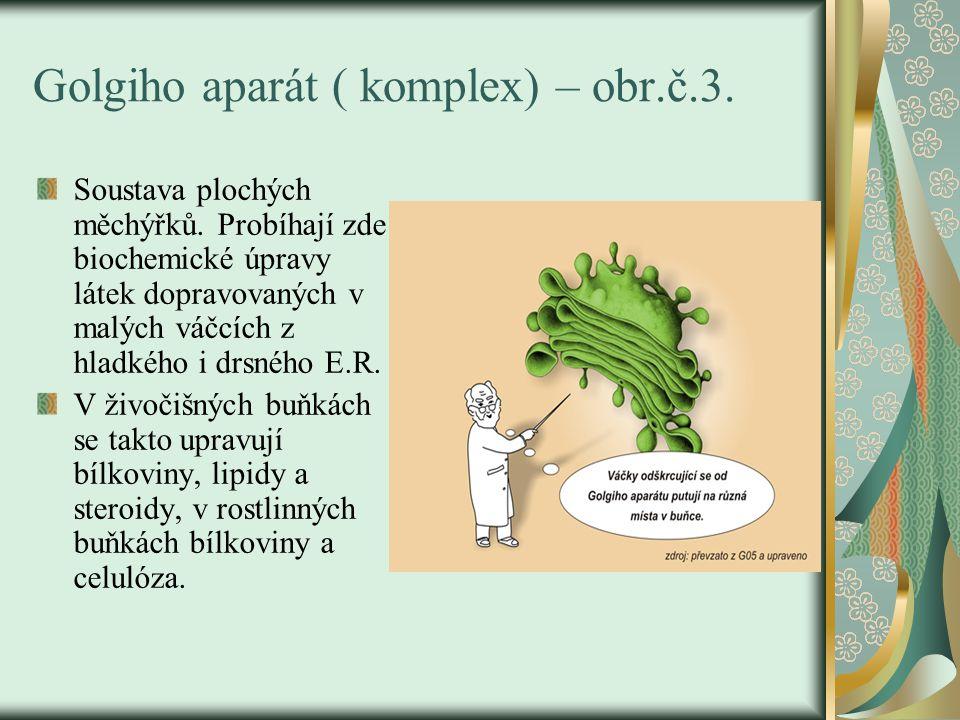 Golgiho aparát ( komplex) – obr.č.3.