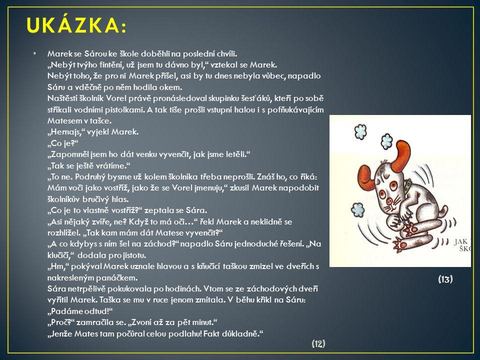 UKÁZKA:
