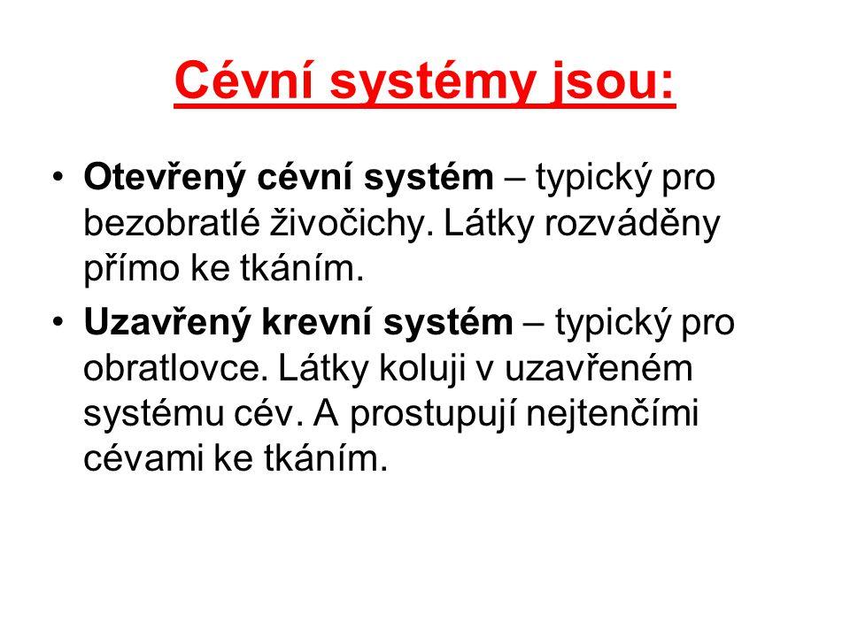Cévní systémy jsou: Otevřený cévní systém – typický pro bezobratlé živočichy. Látky rozváděny přímo ke tkáním.