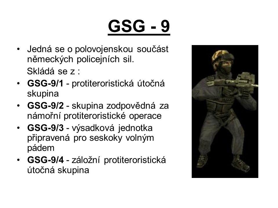 GSG - 9 Jedná se o polovojenskou součást německých policejních sil.