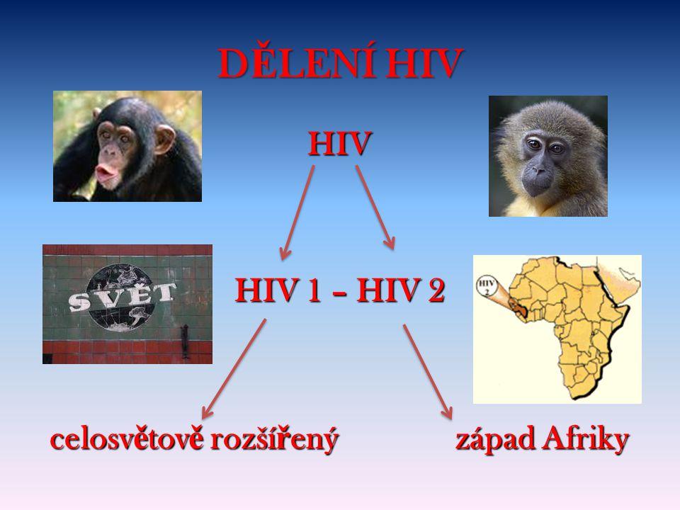HIV HIV 1 – HIV 2 celosvětově rozšířený západ Afriky