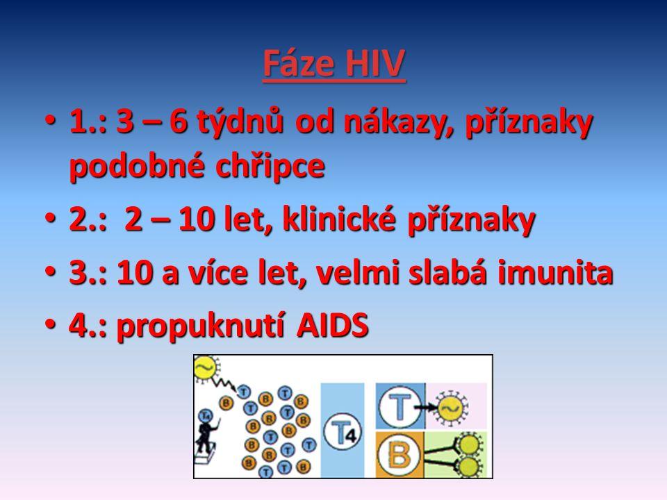 Fáze HIV 1.: 3 – 6 týdnů od nákazy, příznaky podobné chřipce