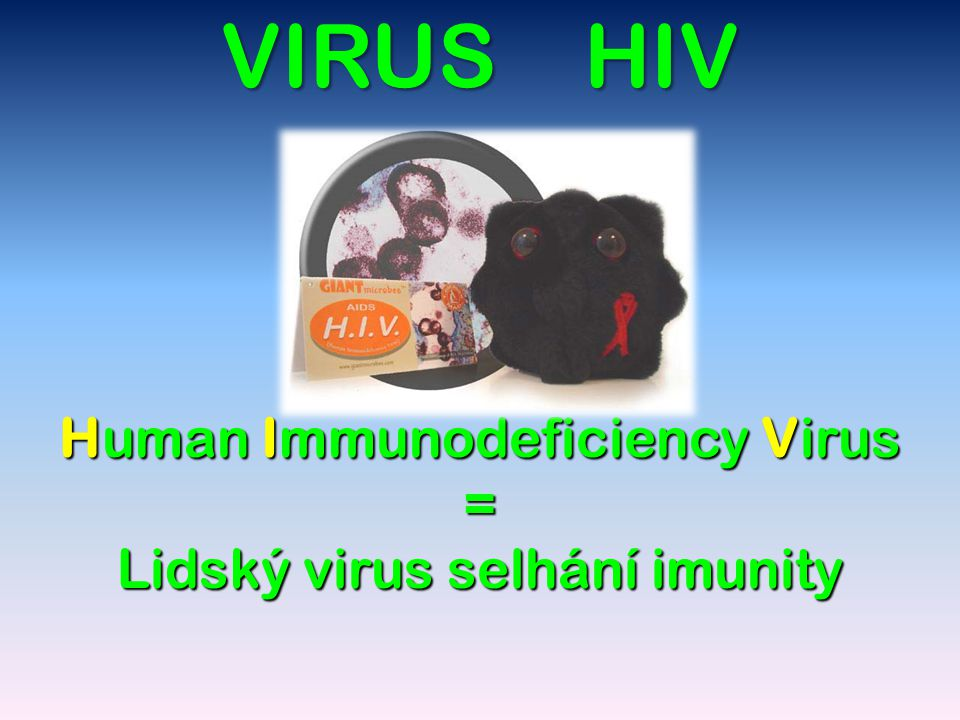 Human Immunodeficiency Virus = Lidský virus selhání imunity