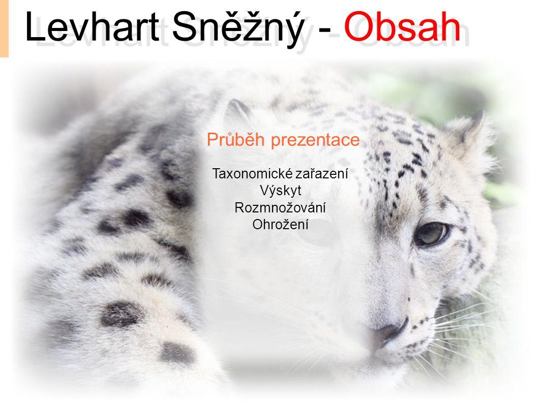 Levhart Sněžný - Obsah Levhart Sněžný - Obsah Průběh prezentace
