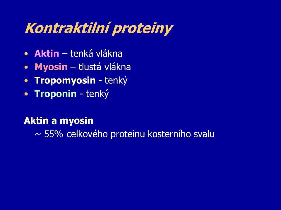 Kontraktilní proteiny