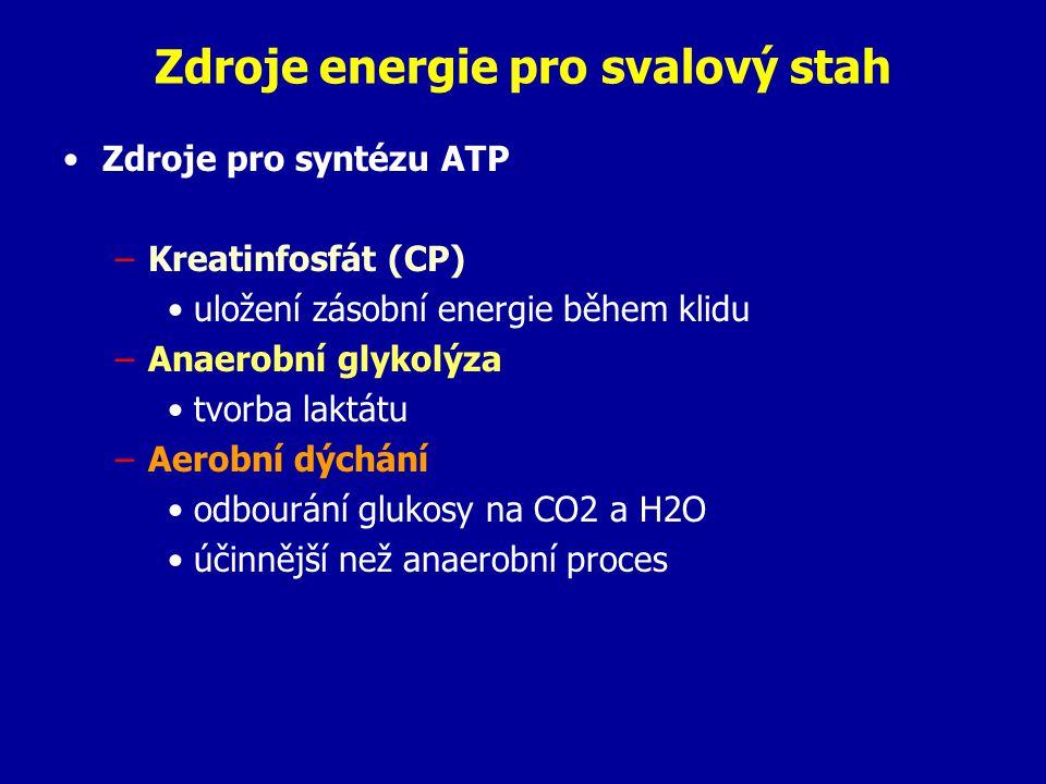 Zdroje energie pro svalový stah