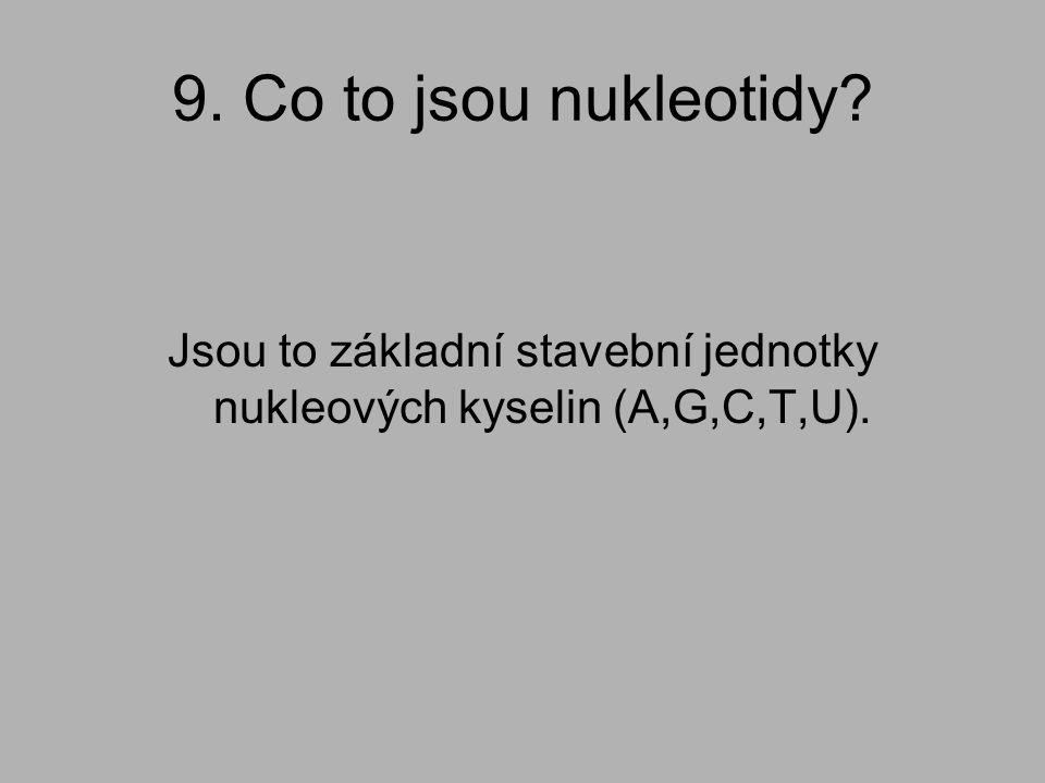 Jsou to základní stavební jednotky nukleových kyselin (A,G,C,T,U).
