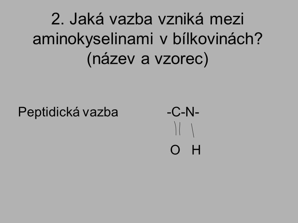 2. Jaká vazba vzniká mezi aminokyselinami v bílkovinách