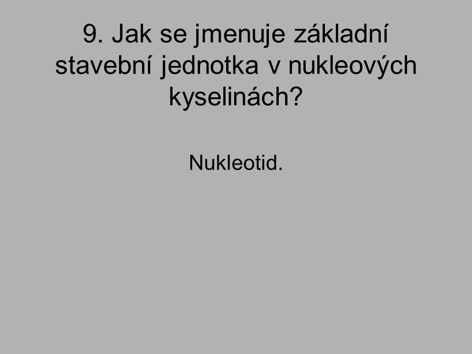 9. Jak se jmenuje základní stavební jednotka v nukleových kyselinách