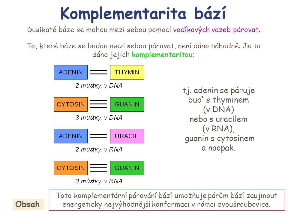 Komplementarita bází tj. adenin se páruje buď s thyminem (v DNA)