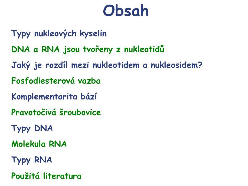 Obsah Typy nukleových kyselin DNA a RNA jsou tvořeny z nukleotidů