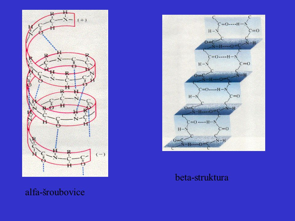 beta-struktura alfa-šroubovice