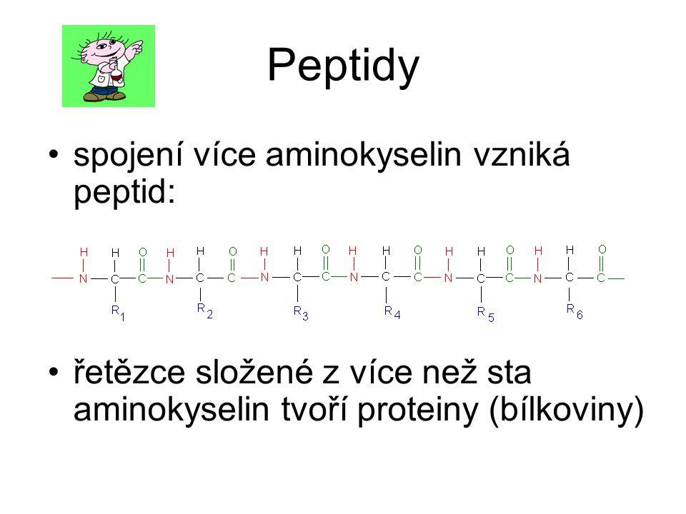 Peptidy spojení více aminokyselin vzniká peptid: