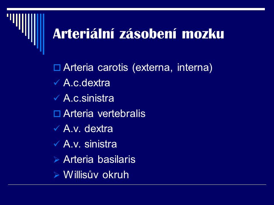 Arteriální zásobení mozku