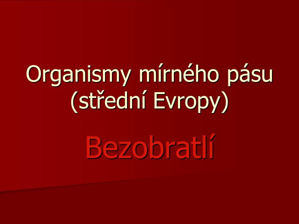 Organismy mírného pásu (střední Evropy)
