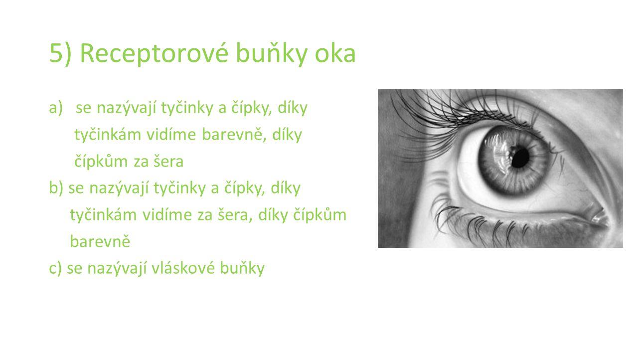 5) Receptorové buňky oka