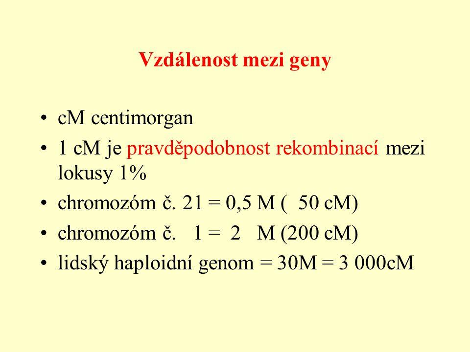 Vzdálenost mezi geny cM centimorgan. 1 cM je pravděpodobnost rekombinací mezi lokusy 1% chromozóm č. 21 = 0,5 M ( 50 cM)