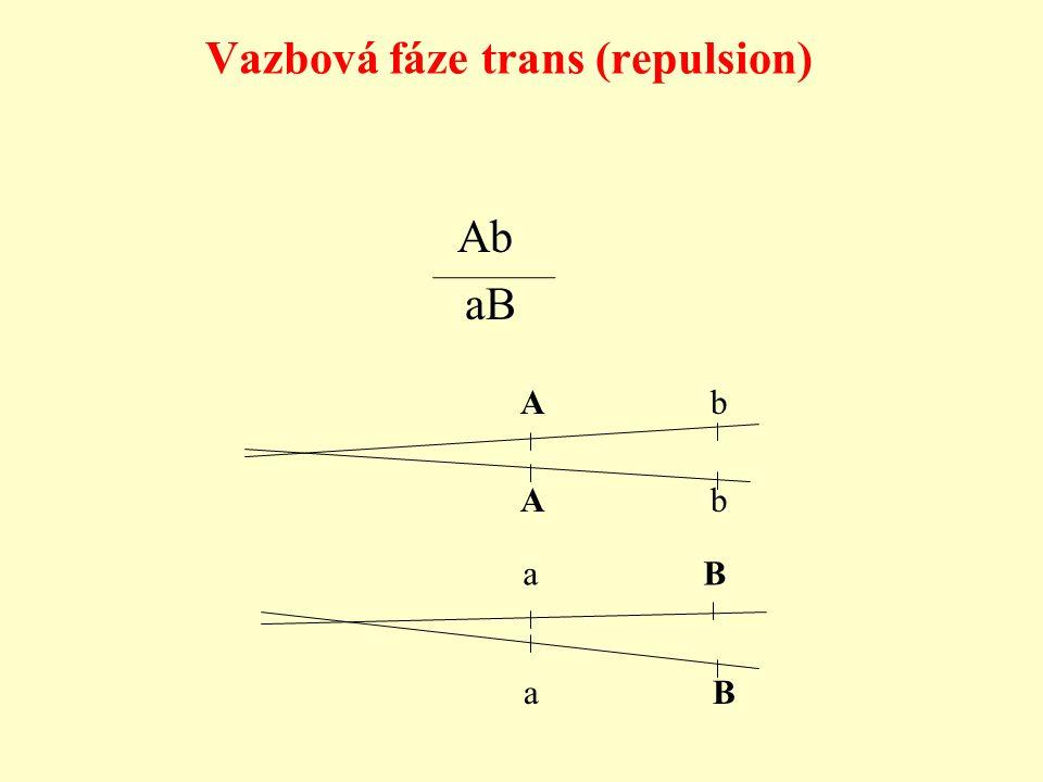 Vazbová fáze trans (repulsion)