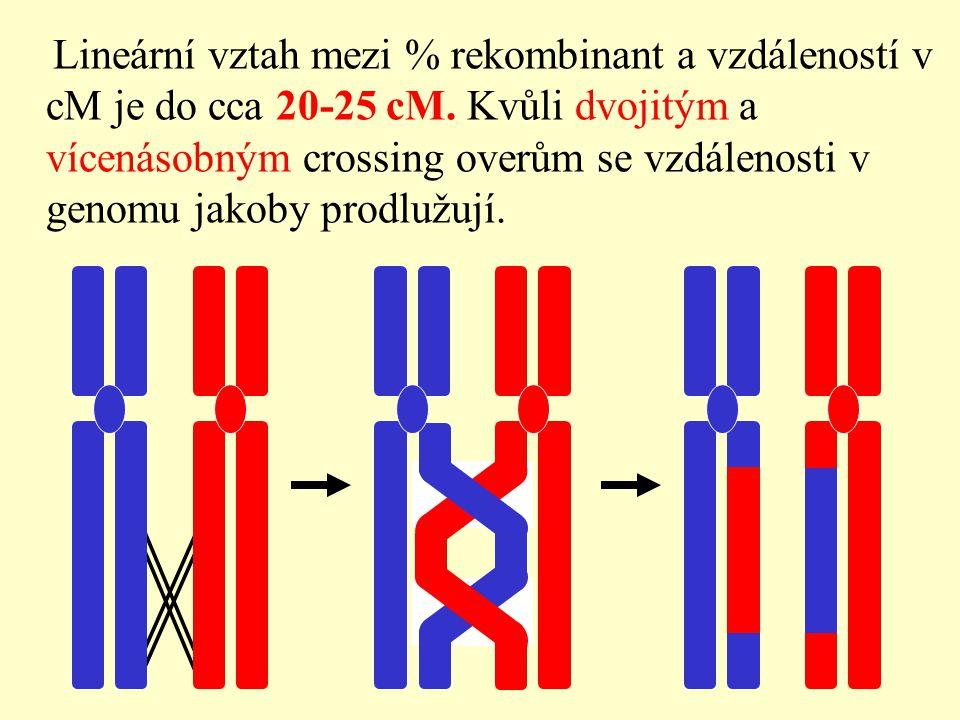 Lineární vztah mezi % rekombinant a vzdáleností v cM je do cca 20-25 cM.