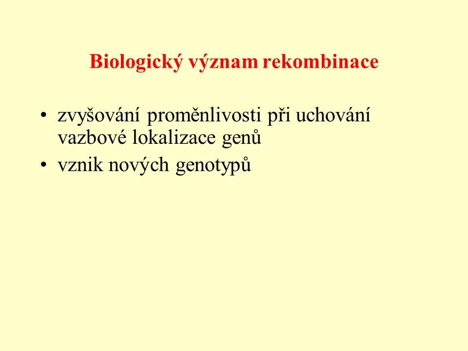 Biologický význam rekombinace