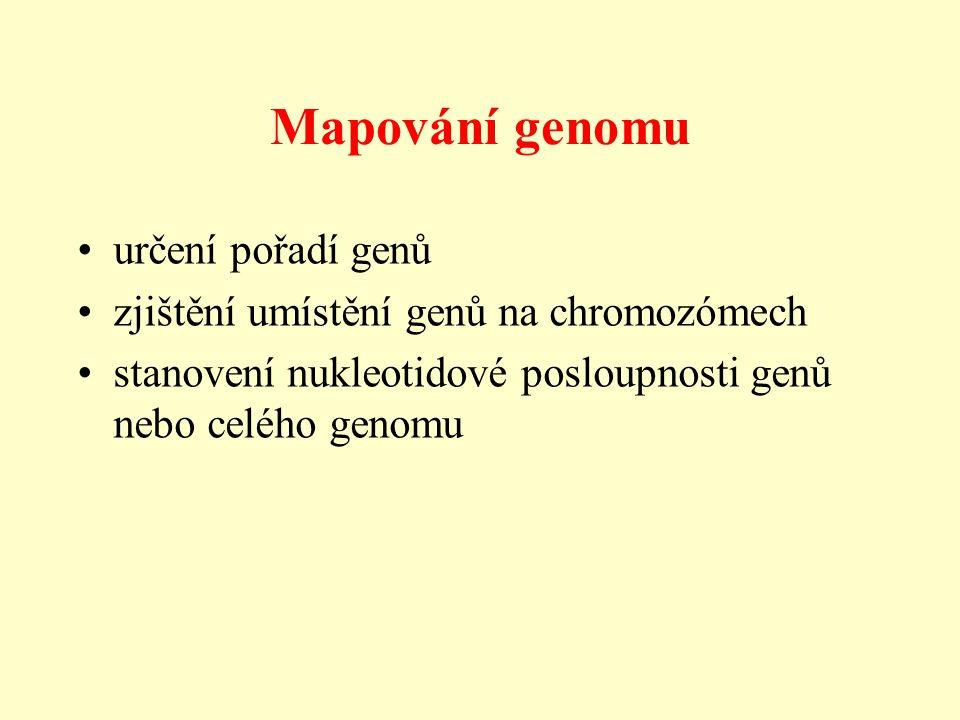 Mapování genomu určení pořadí genů