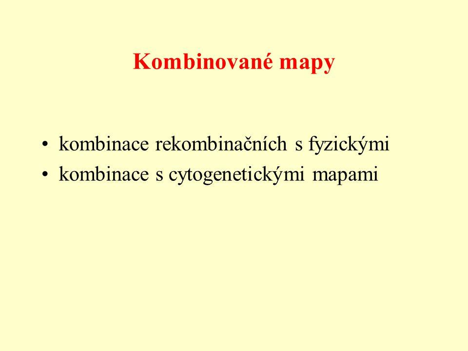 Kombinované mapy kombinace rekombinačních s fyzickými