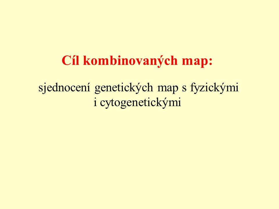 Cíl kombinovaných map: