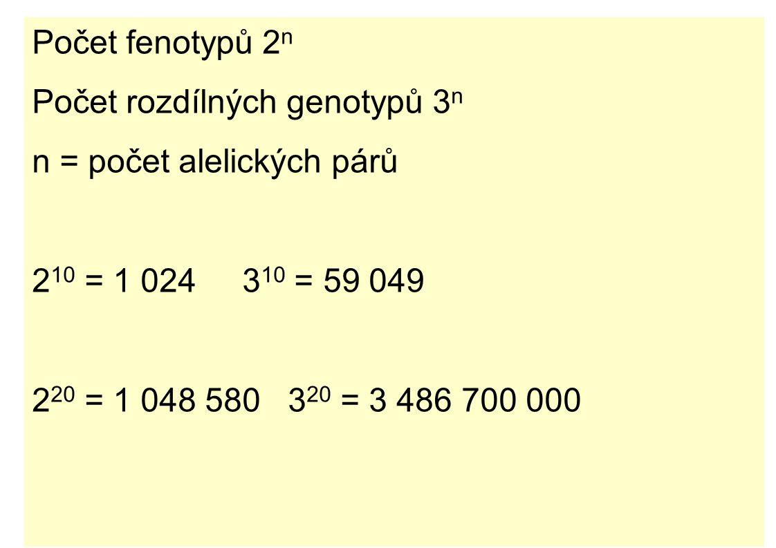 Počet fenotypů 2n Počet rozdílných genotypů 3n. n = počet alelických párů. 210 = 1 024 310 = 59 049.