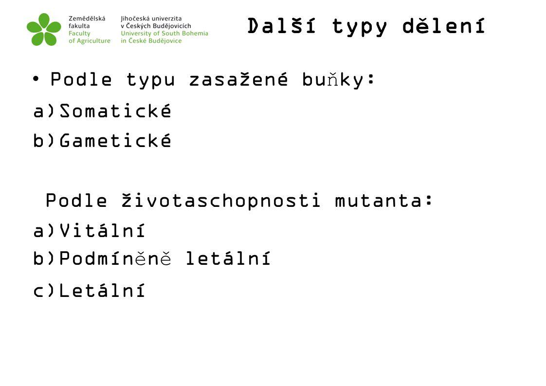 Další typy dělení Podle typu zasažené buňky: Somatické Gametické