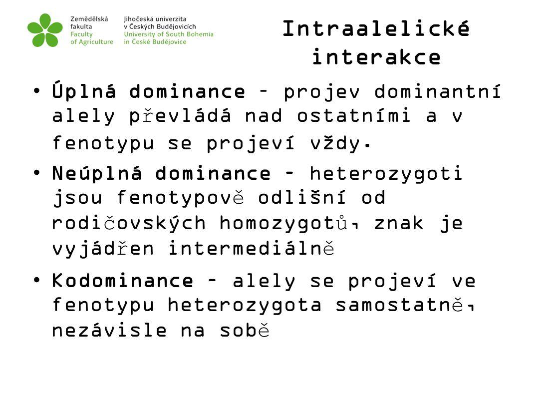 Intraalelické interakce