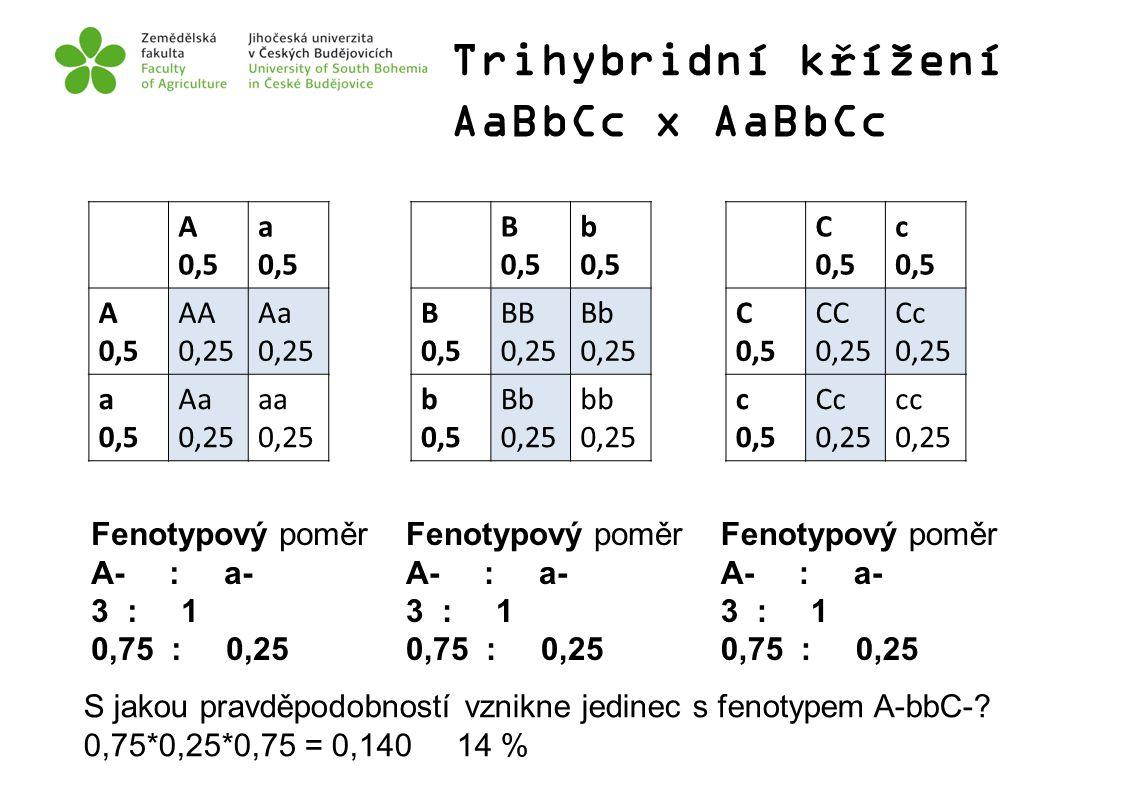 Trihybridní křížení AaBbCc x AaBbCc