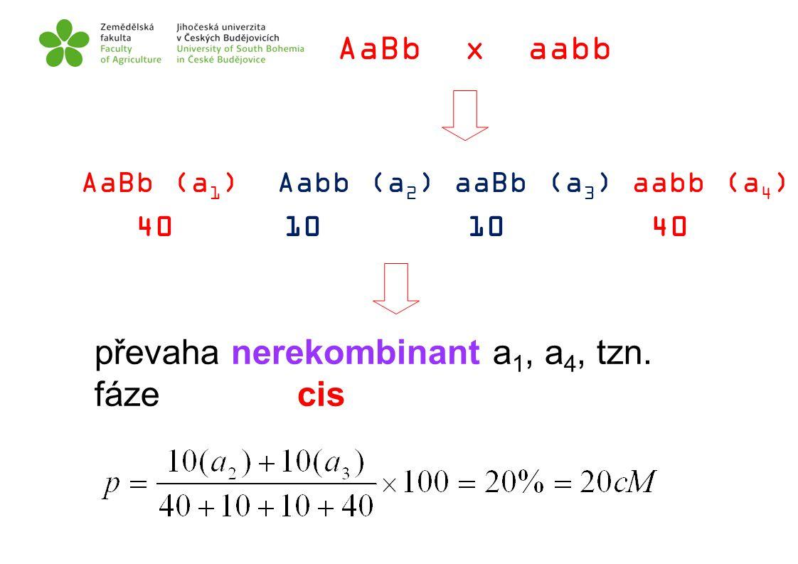převaha nerekombinant a1, a4, tzn. fáze cis