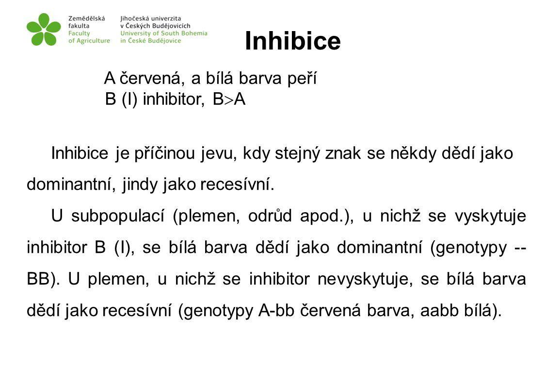 Inhibice A červená, a bílá barva peří B (I) inhibitor, BA