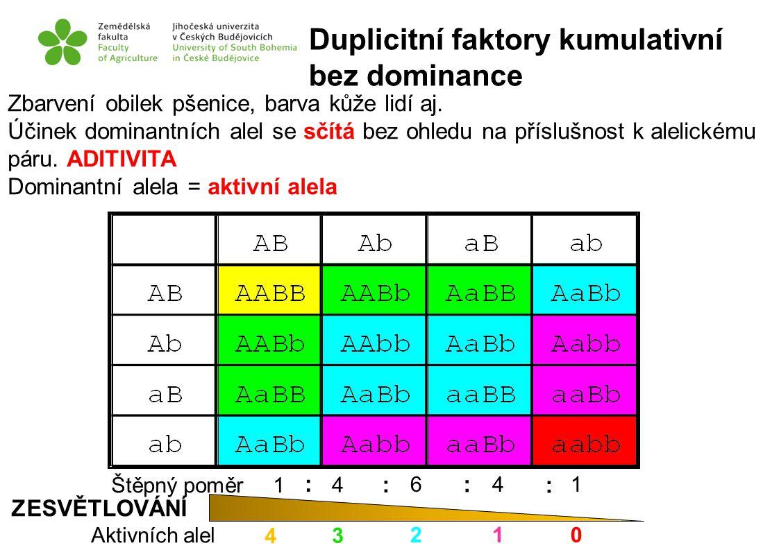 Duplicitní faktory kumulativní bez dominance