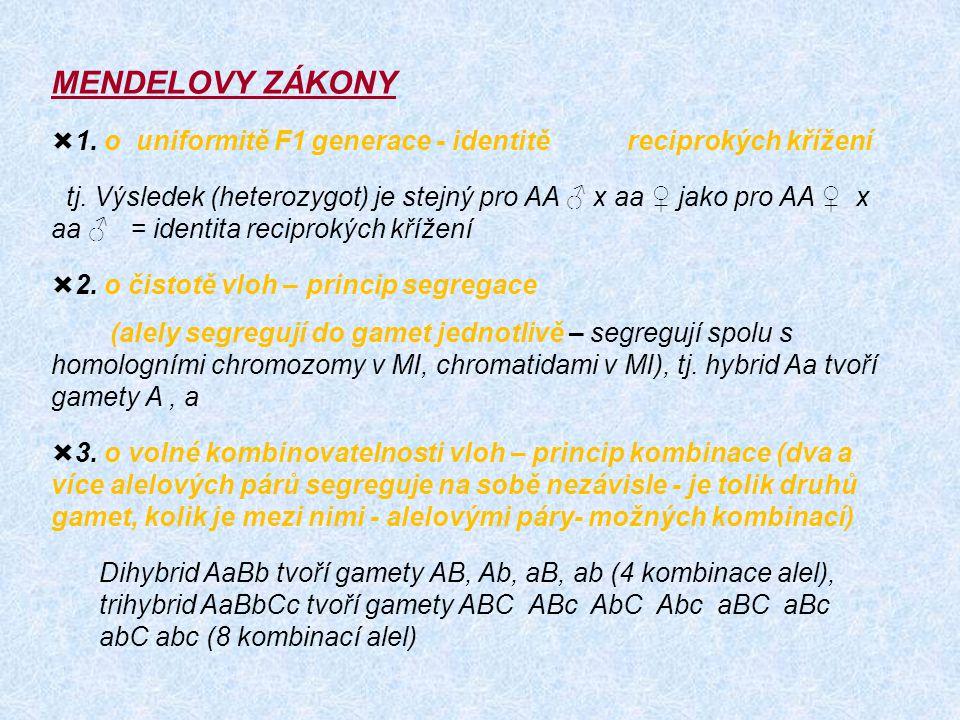 MENDELOVY ZÁKONY 1. o uniformitě F1 generace - identitě reciprokých křížení.