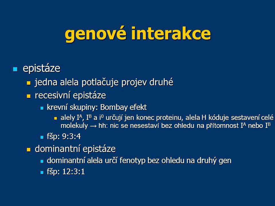 genové interakce epistáze jedna alela potlačuje projev druhé