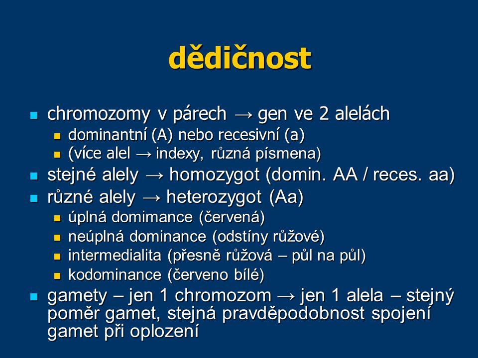 dědičnost chromozomy v párech → gen ve 2 alelách