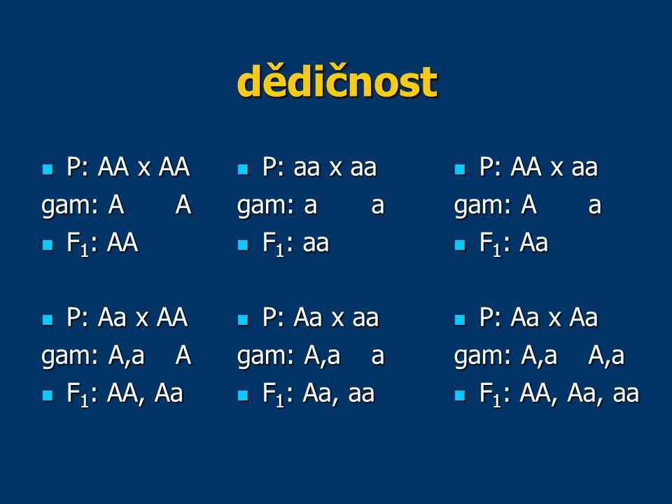 dědičnost P: AA x AA gam: A A F1: AA P: Aa x AA gam: A,a A F1: AA, Aa
