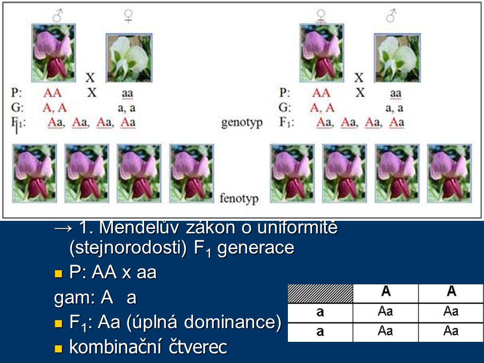 Johann Gregor Mendel autozomálně dědičné kvalitativní znaky
