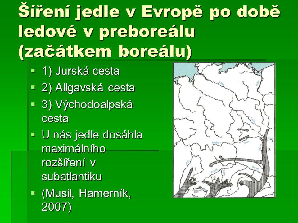 Šíření jedle v Evropě po době ledové v preboreálu (začátkem boreálu)