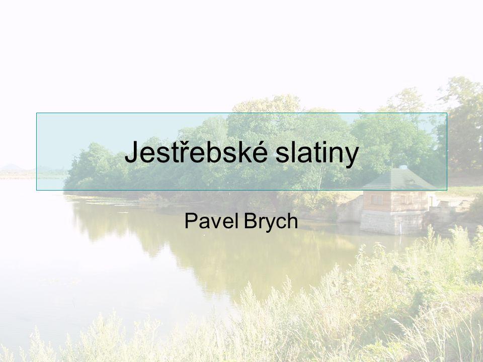 Jestřebské slatiny Pavel Brych