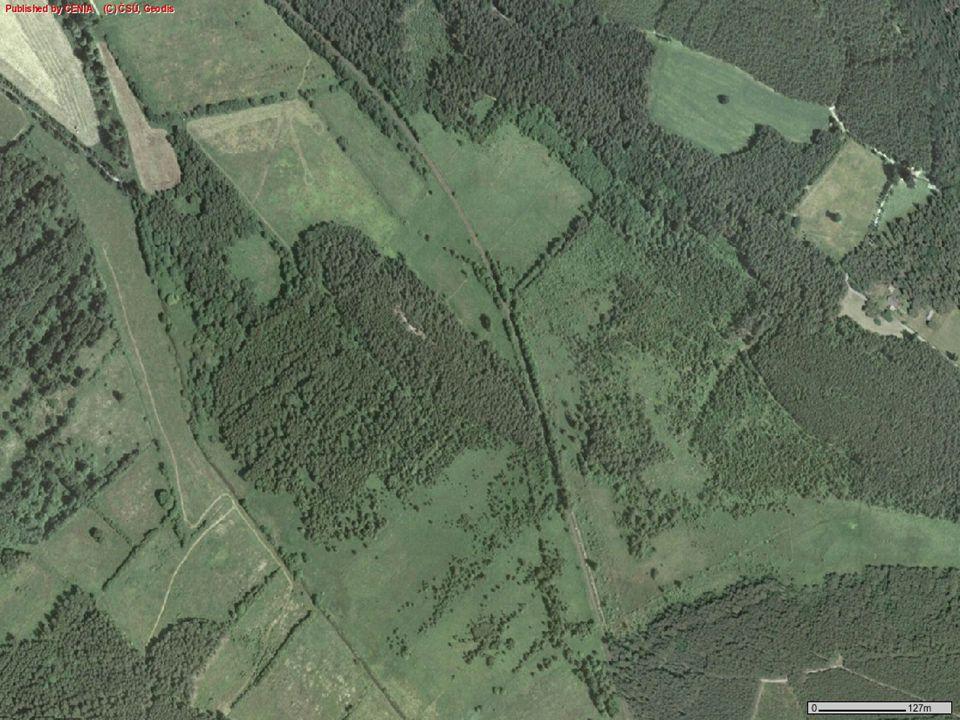 Konvalinkový vrch Malé pískovcové návrší porostlé borem (celková výměra 3,5 ha) Předmětem ochrany - výskyt rojovníku bahenního (Ledum palustre)